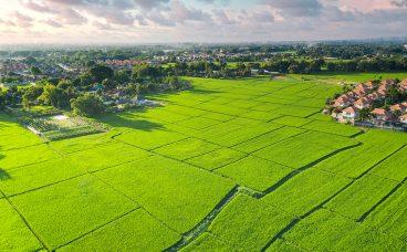 kredyt na zakup ziemi - jaki wybrać?